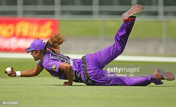 Hayley Matthews of the Hurricanes dives to take a catch in the outfield to dismiss Rachel Priest of the Renegades during the Women's Big Bash League...
