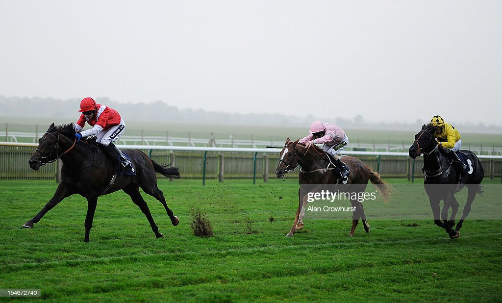 <a gi-track='captionPersonalityLinkClicked' href=/galleries/search?phrase=Hayley+Turner&family=editorial&specificpeople=253629 ng-click='$event.stopPropagation()'>Hayley Turner</a> riding Shrewd (L) win The thoroughbred Breeders' Association Nursery Handicap Stakes at Newmarket racecourse on October 24, 2012 in Newmarket, England.