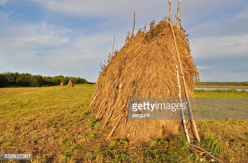 Haystack on the mowing. : Stock Photo