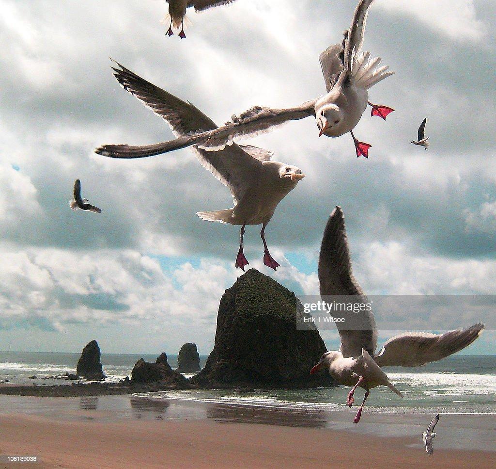 Haystack Rock, Cannon Beach : Stock Photo