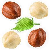 Hazelnut with leaf isolated on white