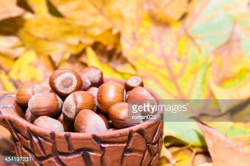 Avelãs no outono : Foto de stock