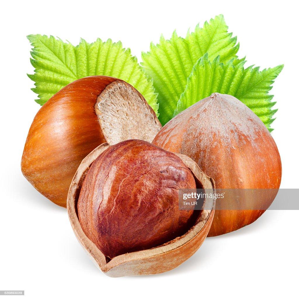 Hazelnuts with leaves : Bildbanksbilder