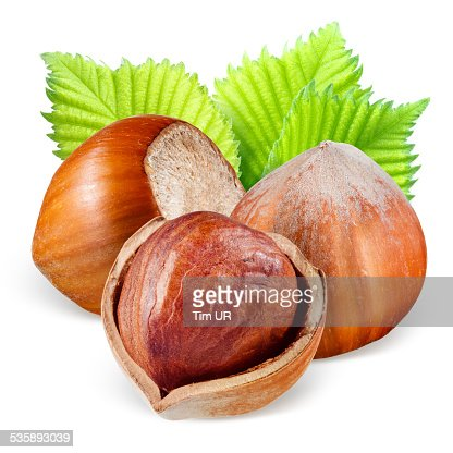 Hazelnuts with leaves : Stock Photo