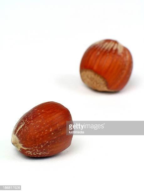 Hazelnuts3
