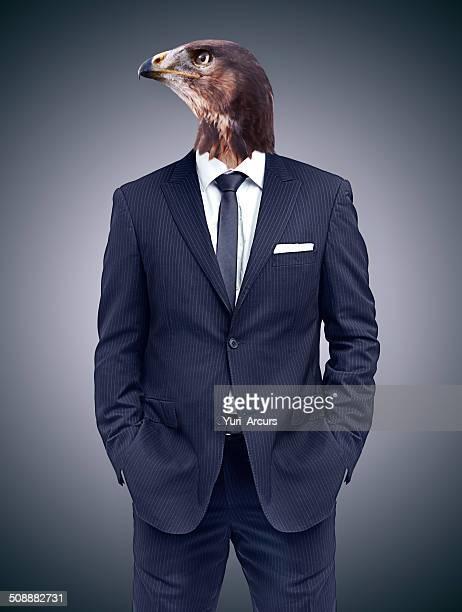 Er hält eine eagle eye auf den financial market