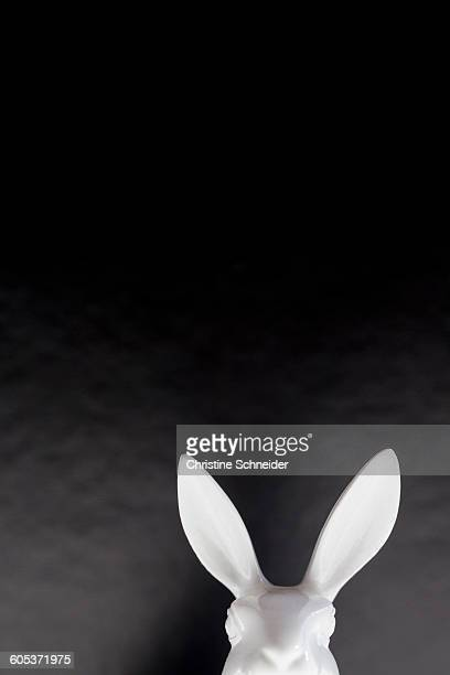 Head and ears of white easter bunny