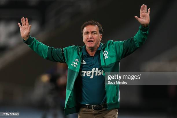 Head coach Cuca of Palmeiras gestures during a match between Botafogo and Palmeiras as part of Brasileirao Series A 2017 at Nilton Santos Stadium on...