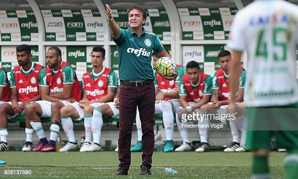 Head coach Cuca of Palmeiras gives advise during the match between Palmeiras and Chapecoense for the Brazilian Series A 2016 at Allianz Parque on...