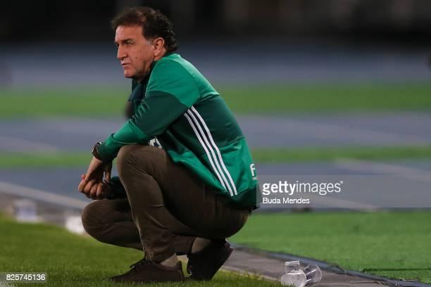 Head coach Cuca of Palmeiras looks on during a match between Botafogo and Palmeiras as part of Brasileirao Series A 2017 at Nilton Santos Stadium on...