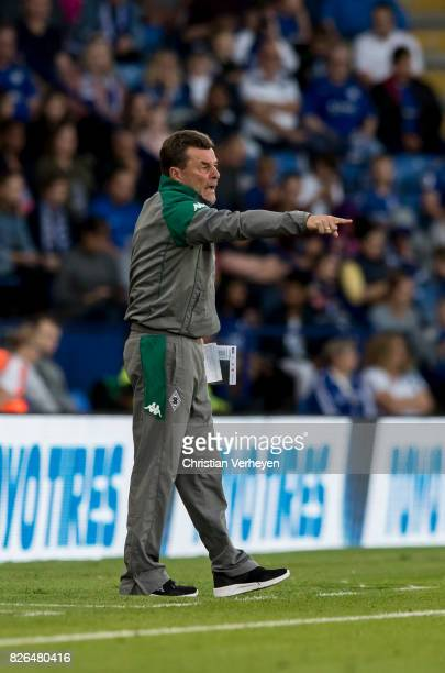 Head Coach Dieter Hecking of Borussia Moenchengladbach during a friendly match between Leicester City and Borussia Moenchengladbach at King Power...