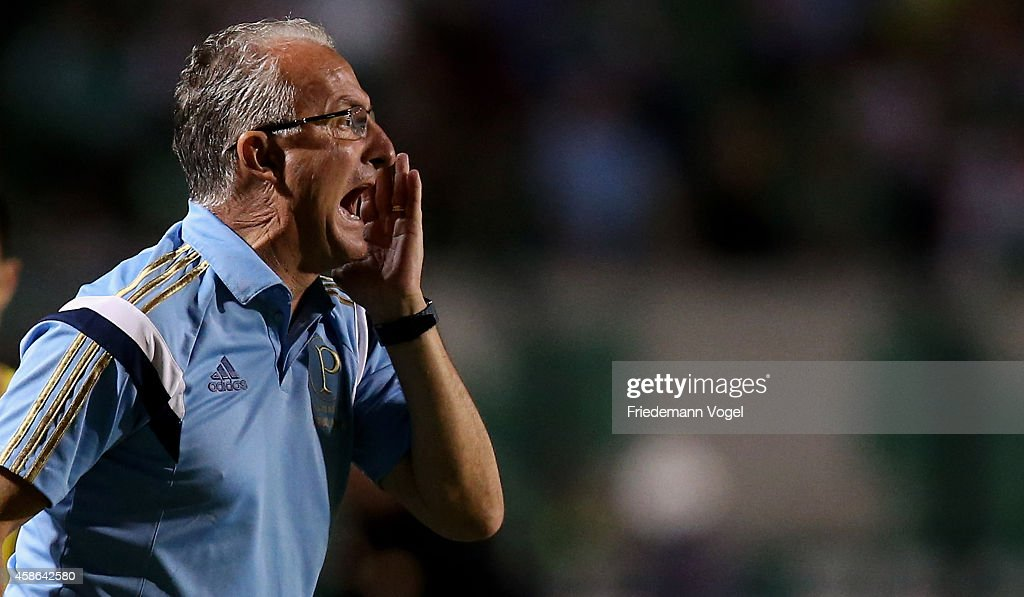 Head coach Dorival Junior of Palmeiras fgives advice during the match between Palmeiras and Atletico MG for the Brazilian Series A 2014 at Pacaembu...