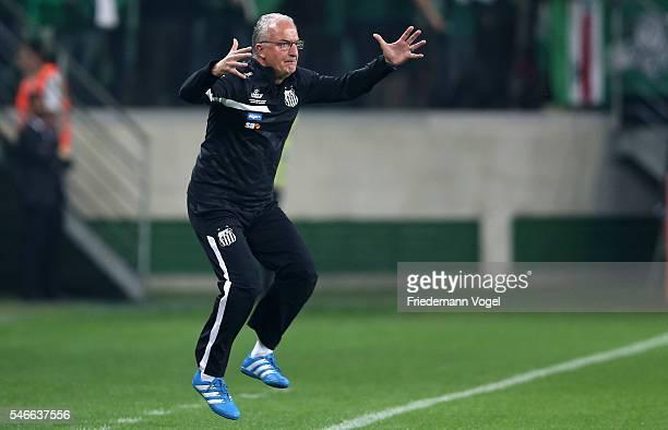 Head coach Dorival Junior of Santos gives advise during the match between Palmeiras and Santos for the Brazilian Series A 2016 at Allianz Parque on...