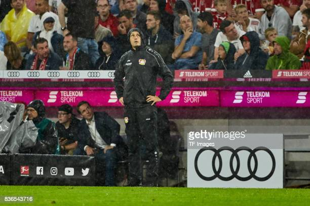Head coach Heiko Herrlich looks on during the Bundesliga match between FC Bayern Muenchen and Bayer 04 Leverkusen at Allianz Arena on August 18 2017...