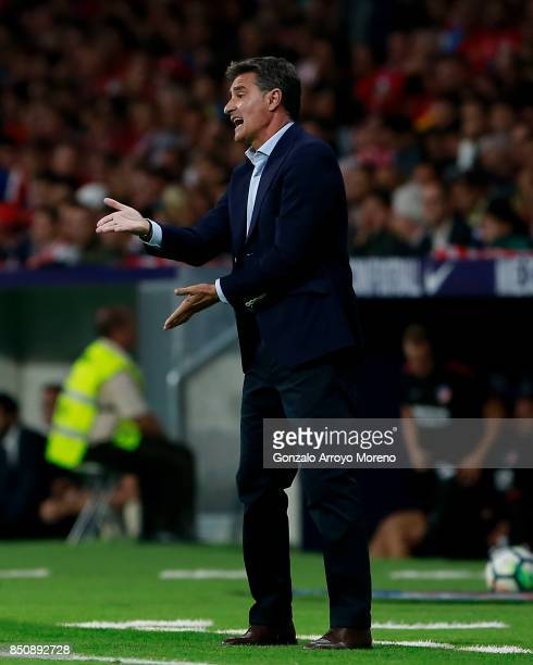 Head coach Michel Gonzalez of Malaga CF gives instructions during the La Liga match between Club Atletico Madrid and Malaga CF at Estadio Wanda...