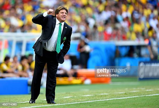 Head coach Miguel Herrera of Mexico gestures during the 2014 FIFA World Cup Brazil Group A match between Brazil and Mexico at Castelao on June 17...