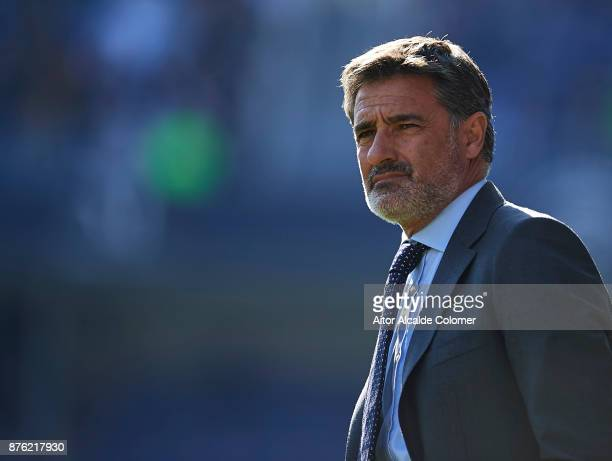 Head Coach of Malaga CF Michel Gonzalez looks on during the La Liga match between Malaga and Deportivo La Coruna at Estadio La Rosaleda on November...