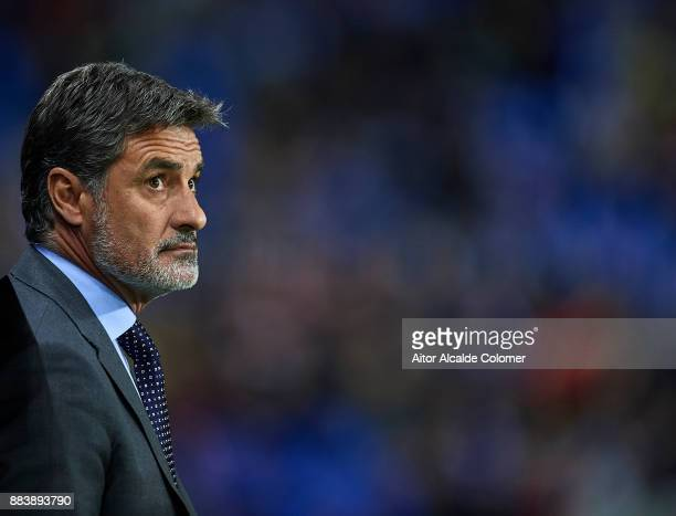 Head Coach of Malaga CF Michel Gonzalez looks on during the La Liga match between Malaga and Levante at Estadio La Rosaleda on December 1 2017 in...
