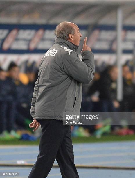 Head coach of Torino FC Giampiero Ventura gestures during the Serie A match between Hellas Verona FC and Torino FC at Stadio Marc'Antonio Bentegodi...