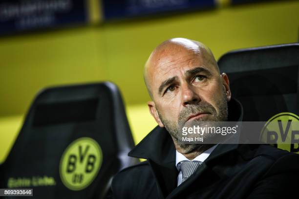 Head coach Peter Bosz of Borussia Dortmund looks on prior the UEFA Champions League group H match between Borussia Dortmund and APOEL Nikosia at...