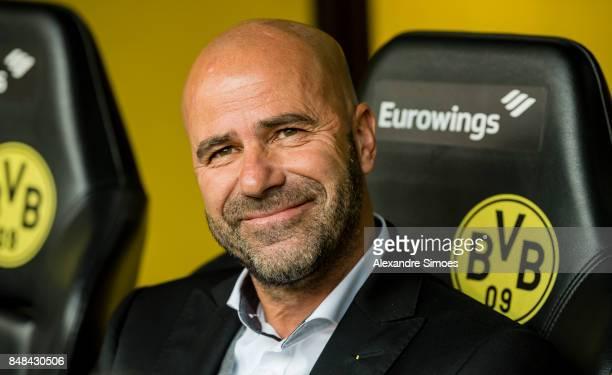 Head coach Peter Bosz of Borussia Dortmund prior to the Bundesliga match between Borussia Dortmund and 1 FC Koeln at the Signal Iduna Park on...