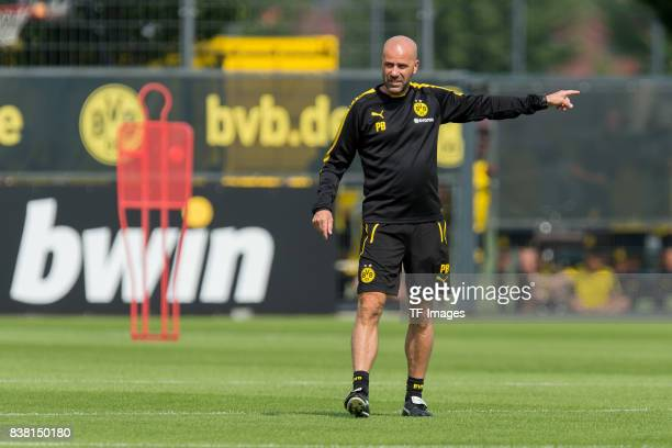 Head coach Peter Bosz of Dortmund gestures during a training session at the BVB Training center on August 22 2017 in Dortmund Germany