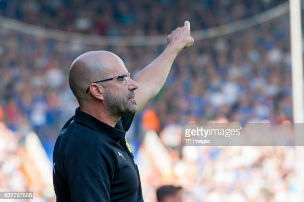 Head coach Peter Bosz of Dortmund gestures during the preseason friendly match between VfL Bochum and Borussia Dortmund at Vonovia Ruhrstadion on...