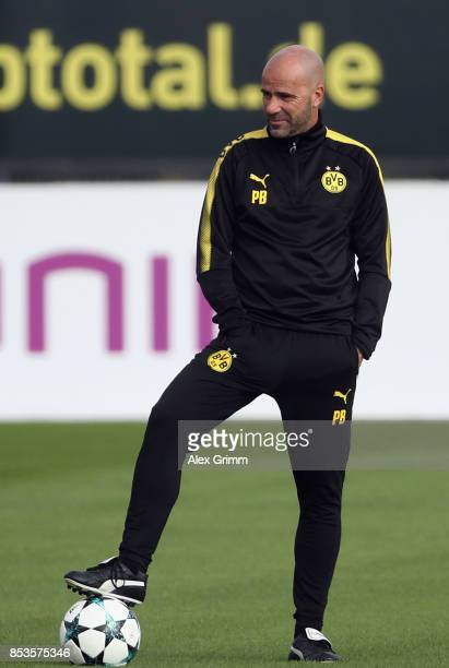 Head coach Peter Bosz of Dortmund looks on during a Borussia Dortmund training session ahead of their UEFA Champions League Group H match against...