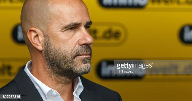 Head coach Peter Bosz of Dortmund looks on during the DFL Supercup 2017 match between Borussia Dortmund and Bayern Muenchen at Signal Iduna Park on...