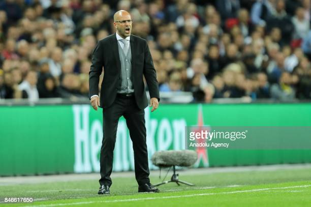Head coach Peter Bosz of Dortmund looks on during the UEFA Champions League group H match between Tottenham Hotspur and Borussia Dortmund at...