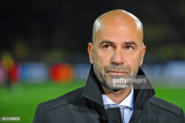 Head coach Peter Bosz of Dortmund looks on during the UEFA Champions League Group H soccer match between Borussia Dortmund and APOEL Nicosia at...