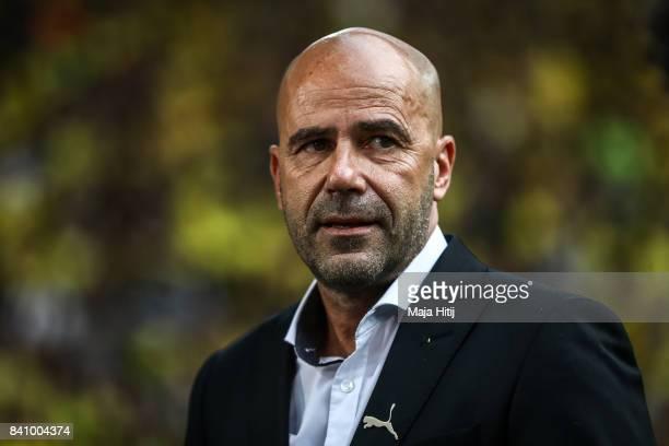 Head coach Peter Bosz of Dortmund looks on prior the Bundesliga match between Borussia Dortmund and Hertha BSC at Signal Iduna Park on August 26 2017...