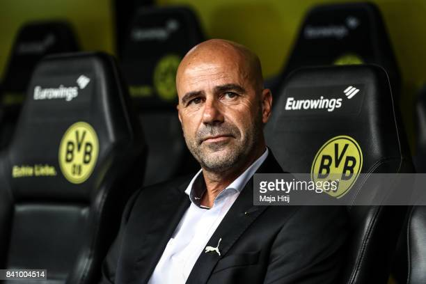 Head coach Peter Bosz of Dortmund looks on prior the Bundesliga match between Borussia Dortmund and Hertha BSC at Signal Iduna Park on August 26 2017...