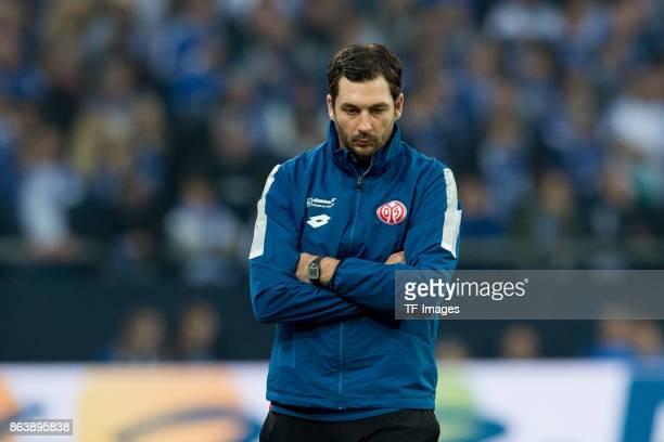 Head coach Sandro Schwarz of Mainz looks on during the Bundesliga match between FC Schalke 04 and 1 FSV Mainz 05 at VeltinsArena on October 20 2017...