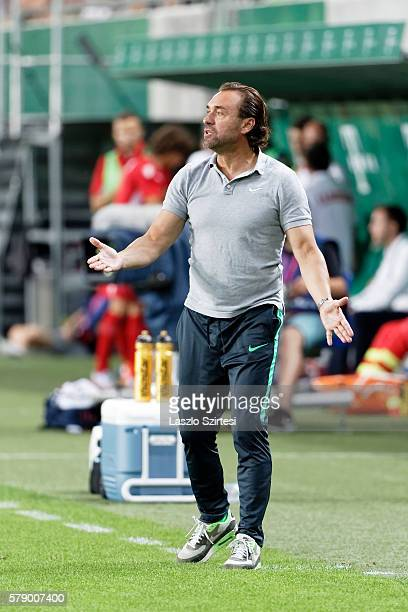 Head coach Thomas Doll of Ferencvarosi TC is nervous during the UEFA Champions League Qualifying Round match between Ferencvarosi TC and FK Partizani...