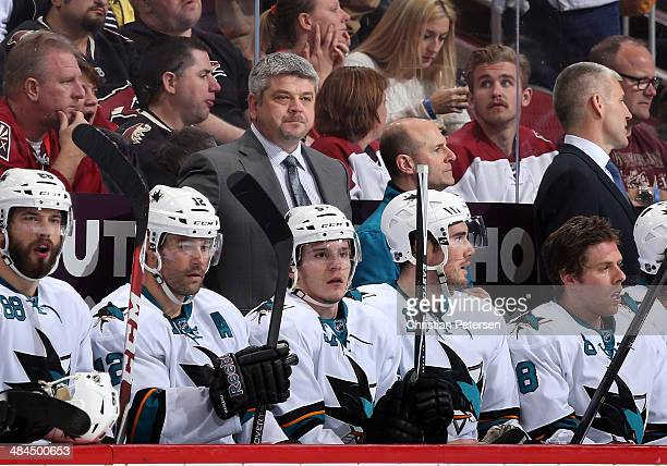 Head coach Todd McLellan of the San Jose Sharks watches from the bench during the NHL game against the Phoenix Coyotes at Jobingcom Arena on April 12...