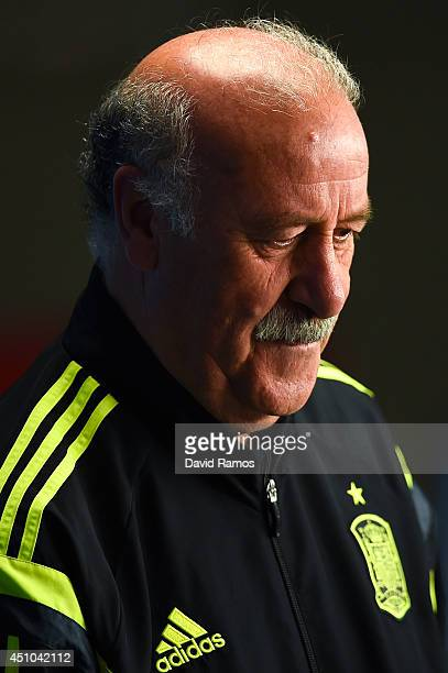 Head coach Vicente Del Bosque of Spain faces the media during a Spain press conference ahead of the 2014 FIFA World Cup Group B match between...