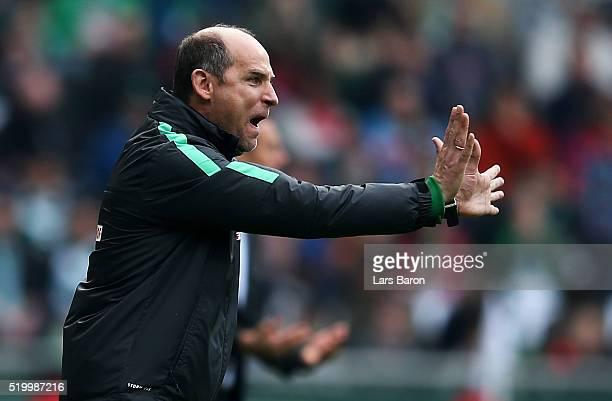 Head coach Viktor Skripnik of Bremen gestures during the Bundesliga match between Werder Bremen and FC Augsburg at Weserstadion on April 9 2016 in...
