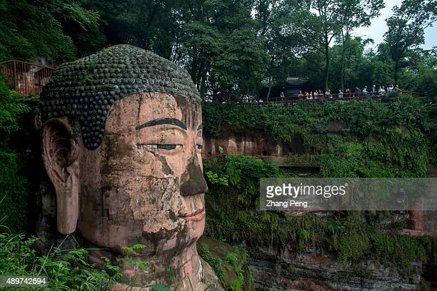Head of the Leshan Giant Buddha The Leshan Giant Buddha built during the Tang Dynasty is the largest stone Buddha in the world and has been listed as...