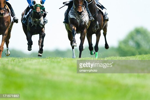 Head On Horse Racing on turf - Steeplechase