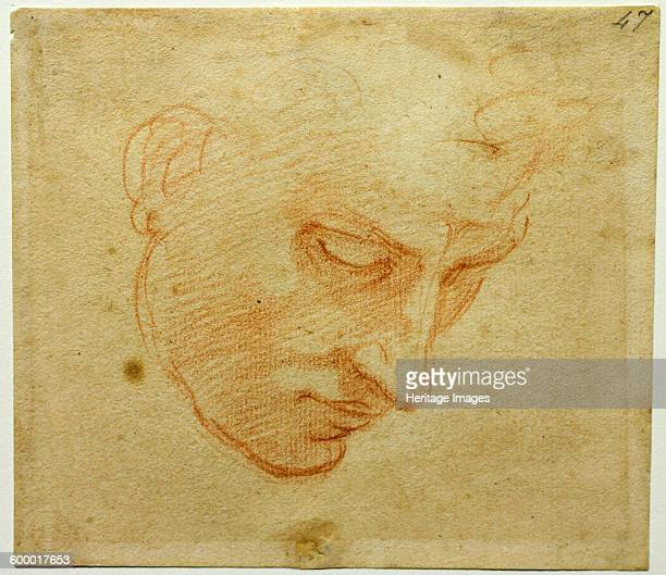 Head Study to the Sistine Chapel ceiling ca 15091510 Found in the collection of Casa Buonarroti Florence Artist Buonarroti Michelangelo