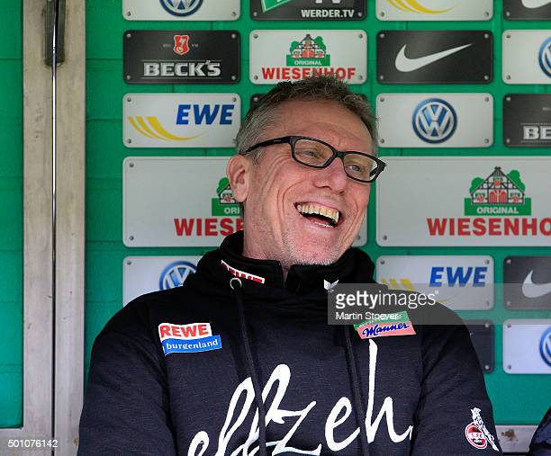 Headcoach Peter Stoeger of Koeln looks on during the Bundesliga match between Werder Bremen and 1 FC Koeln at Weserstadion on December 12 2015 in...