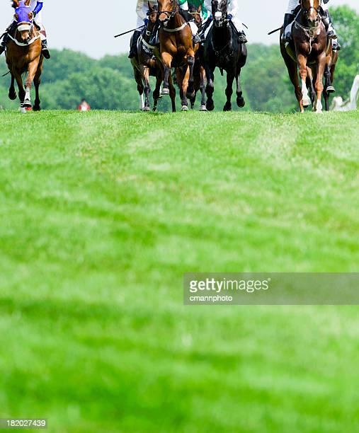 La tête de la course de chevaux sur gazon