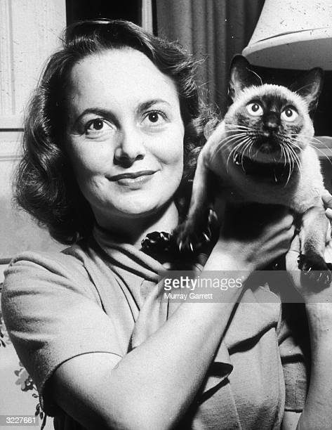 Headshot of American actor Olivia de Havilland holding her Siamese cat Chauncey at home in Los Angeles California Chauncey's claws are fully extended