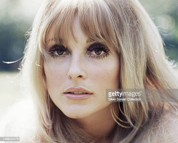 Headshot of Sharon Tate US actress circa 1965