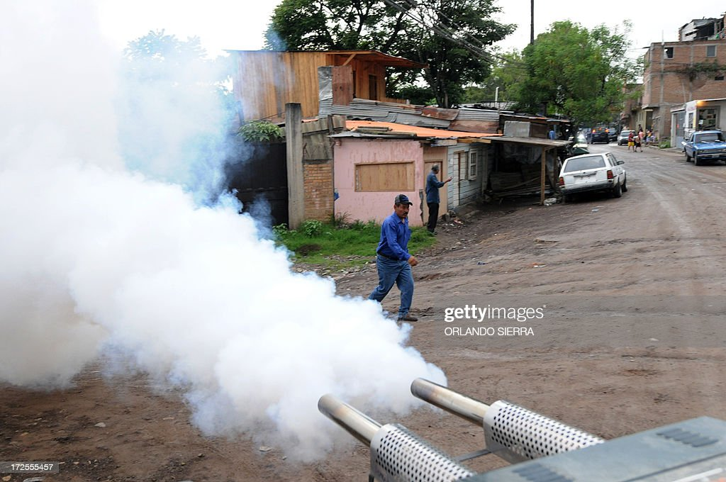 Health personnel fumigates in Tegucigalpa on July 3, 2013. The disease vectored by the Aedes aegypti mosquito has killed ten people in Honduras so far this year. AFP PHOTO /Orlando SIERRA.