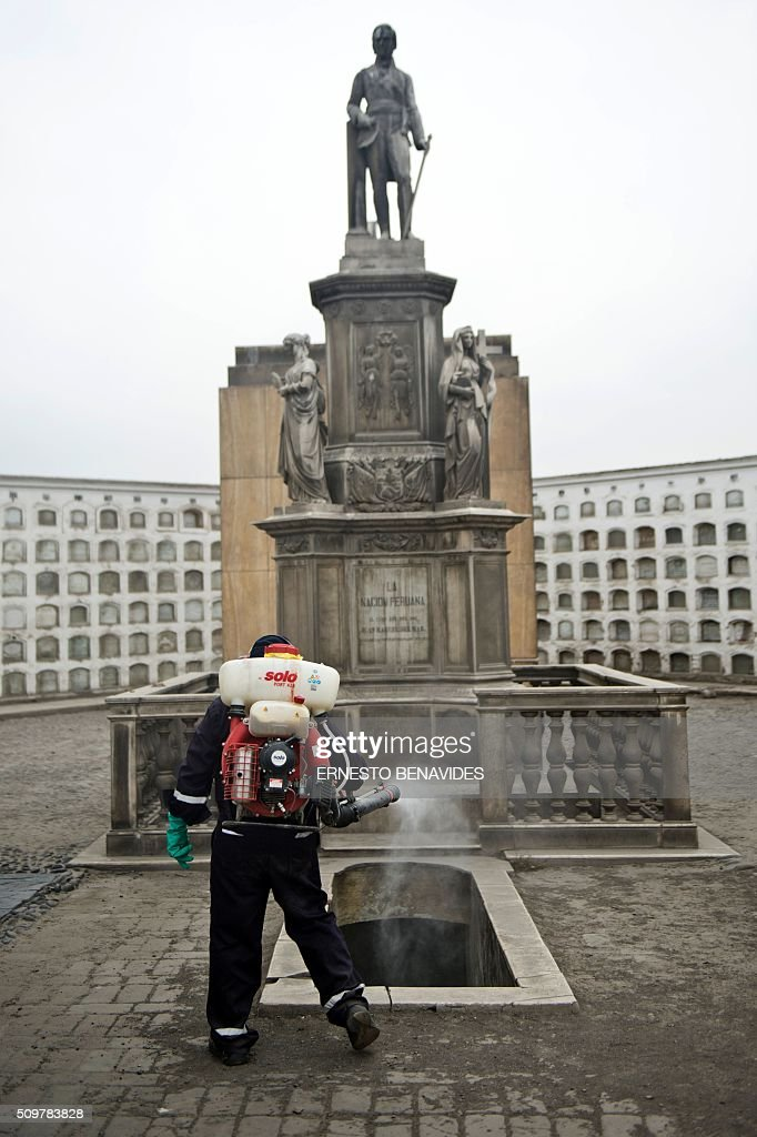 A health worker fumigates against the Aedes aegypti mosquito at the Presbitero Maestro cemetery in Lima on February 12, 2016. The Aedes aegypti is the vector of Zika, Dengue and Chikungunya. AFP PHOTO / ERNESTO BENAVIDES / AFP / ERNESTO BENAVIDES