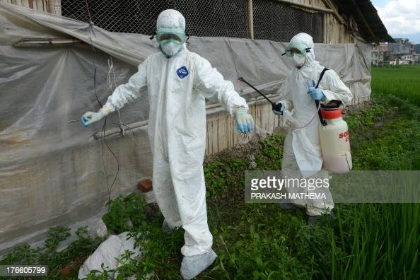 A health worker sprays a colleague with disinfectant during a culling operation at a poultry farm suspected of having a bird flu outbreak in Katunje...