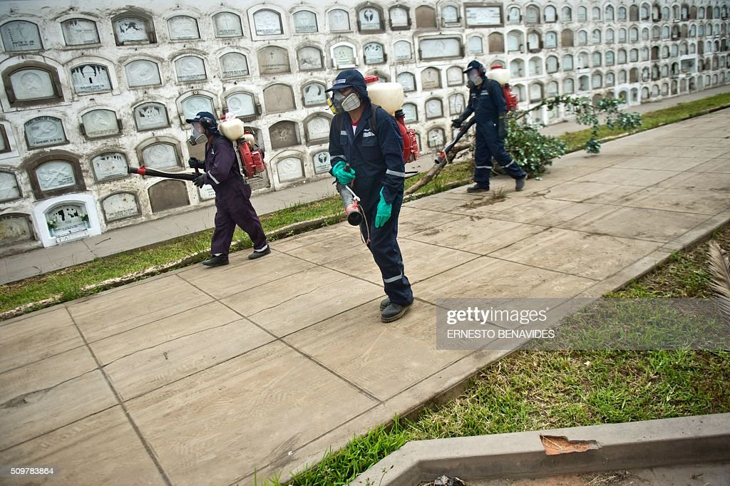 Health workers fumigate against the Aedes aegypti mosquito at the Presbitero Maestro cemetery in Lima on February 12, 2016. The Aedes aegypti is the vector of Zika, Dengue and Chikungunya. AFP PHOTO / ERNESTO BENAVIDES / AFP / ERNESTO BENAVIDES