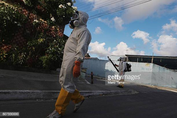 Health workers fumigate in an attempt to eradicate the mosquito which transmits the Zika virus on January 28 2016 in Recife Pernambuco state Brazil...
